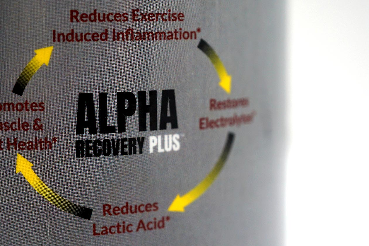 Alpha Recovery Plus Review
