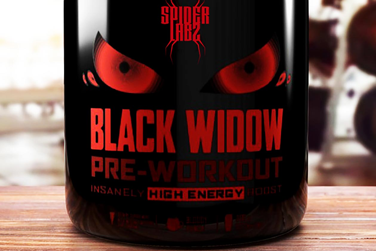 spider labz black widow