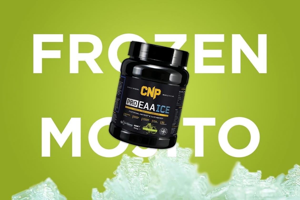 frozen mojito cnp eaa ice