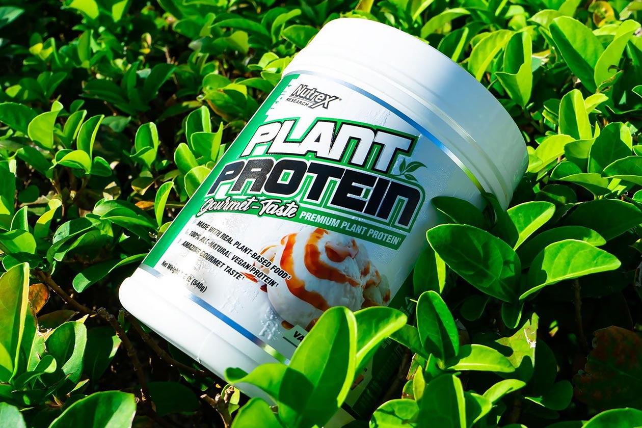 nutrex plant protein giveaway