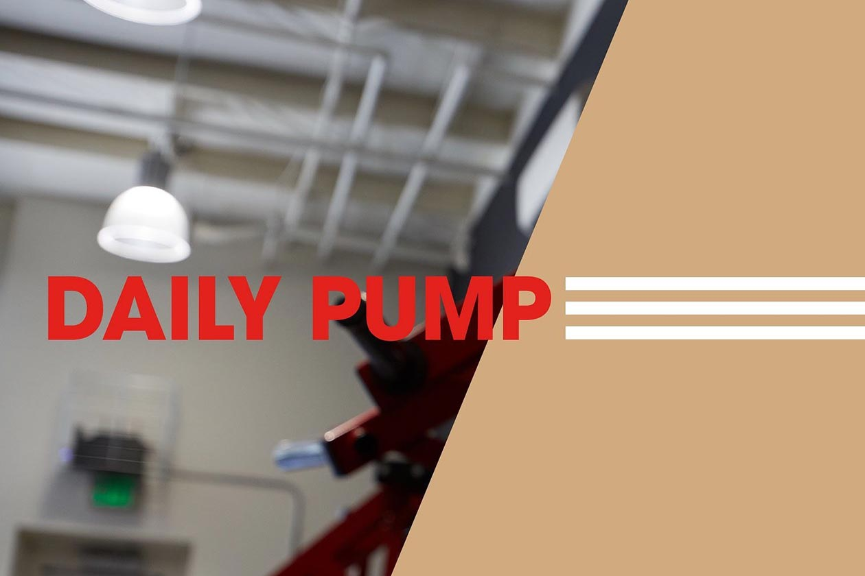 arms race nutrition daily pump