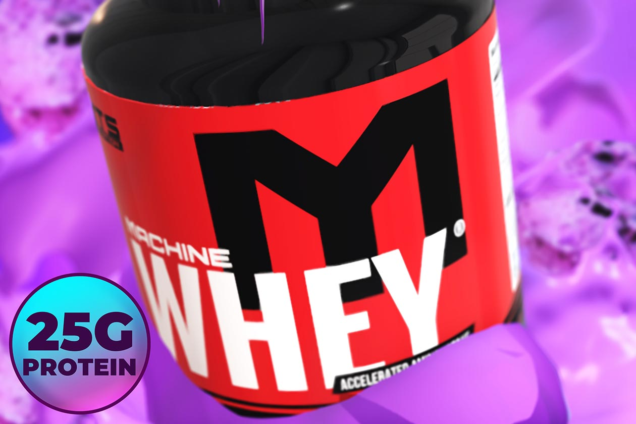 black raspberry chocolate chip machine whey