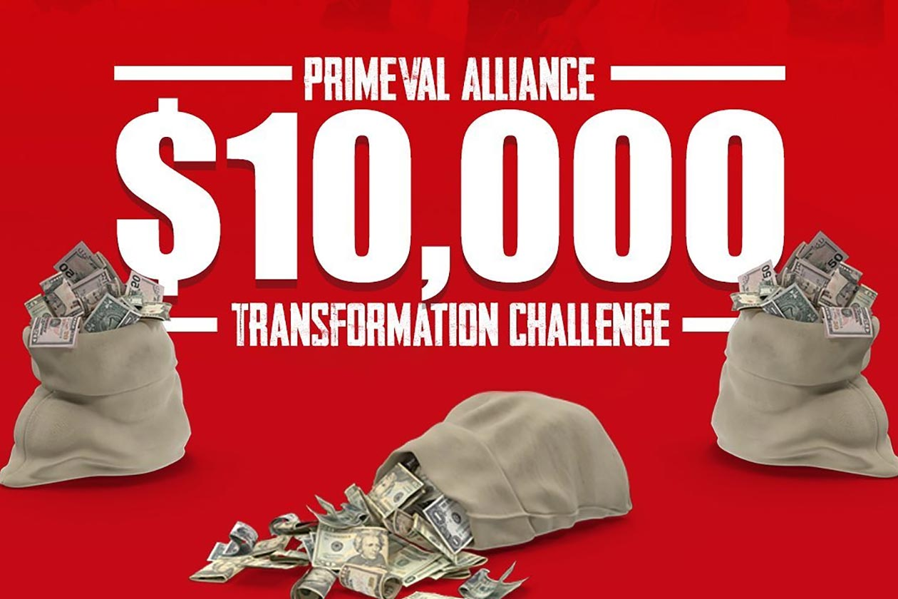 primeval labs transformation challenge