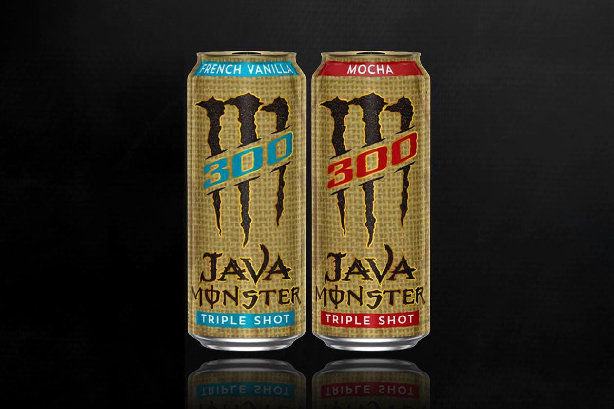 java monster 300