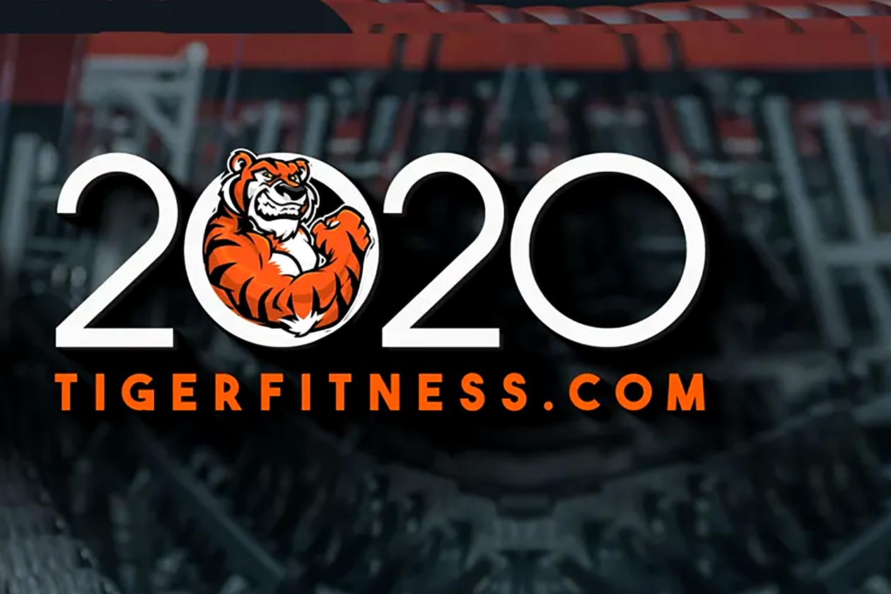 tiger fitness 2020 sale