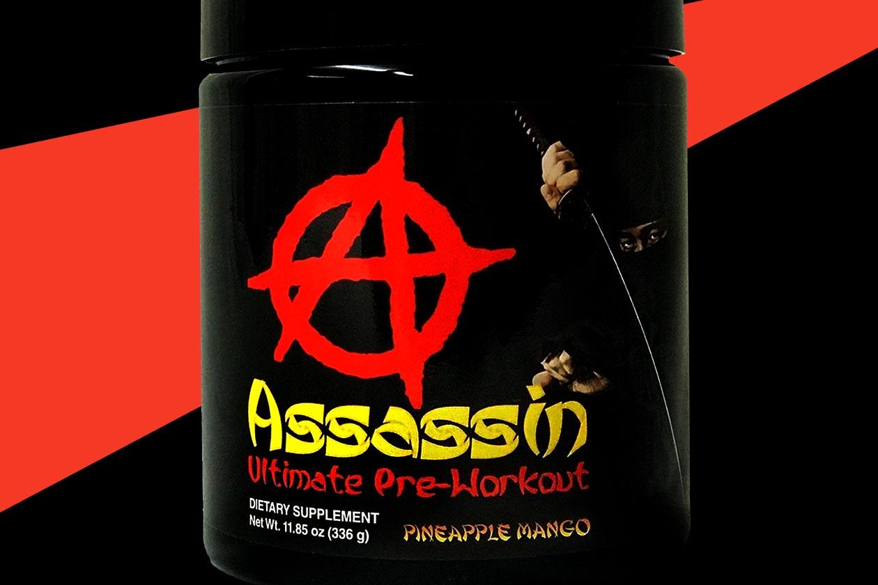 apollon nutrition assassin