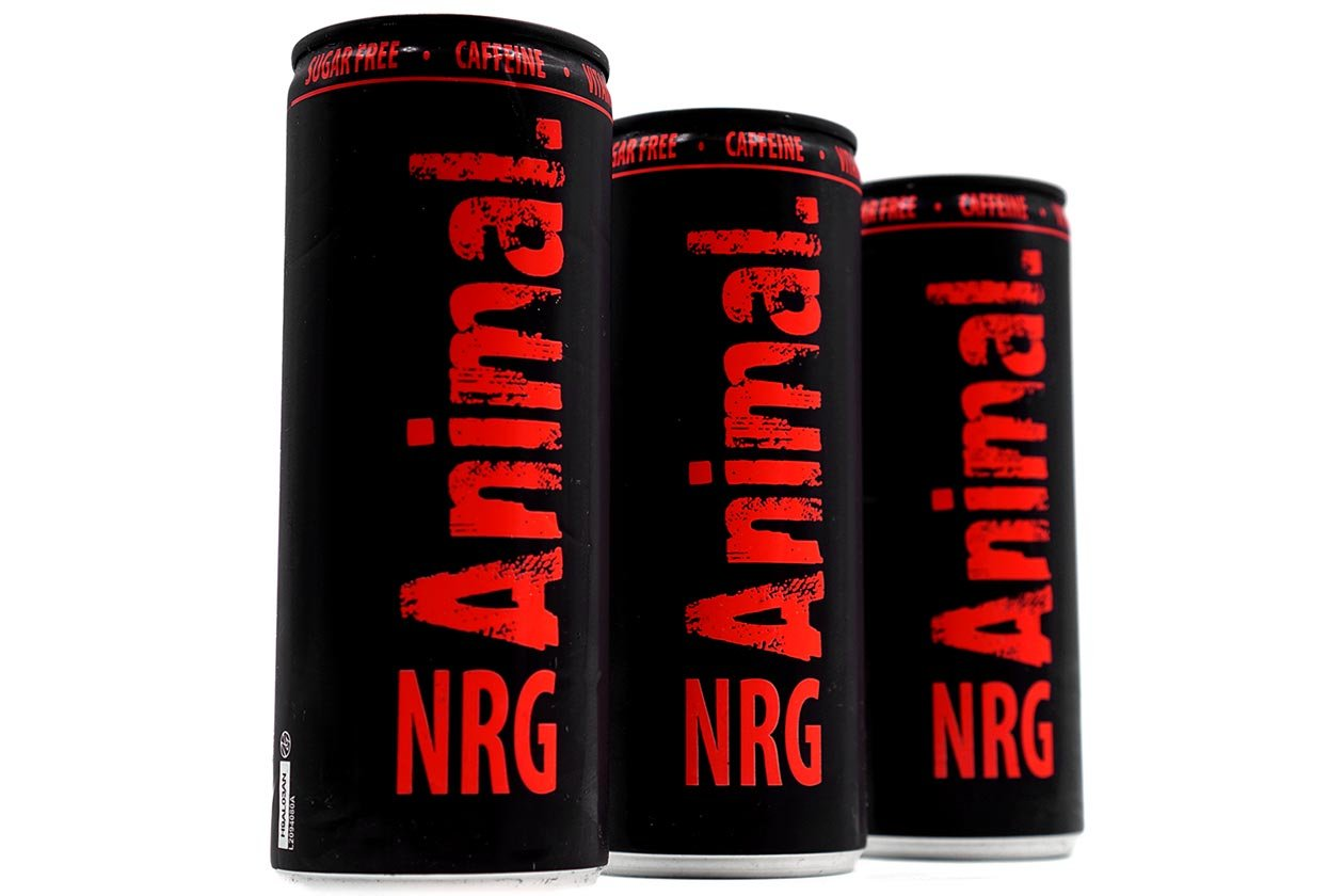 animal energy drink review