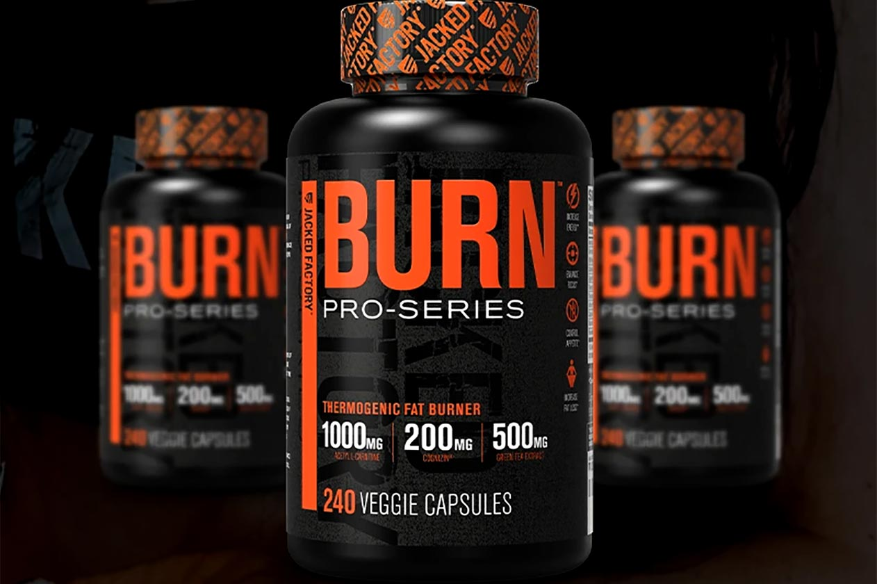 jacked factory pro series burn