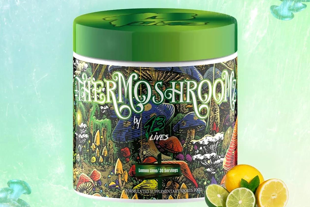 13 lives thermoshroom