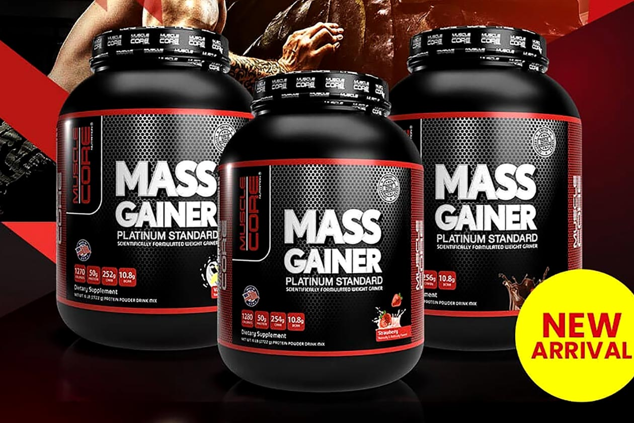 muscle core nutrition mass gainer